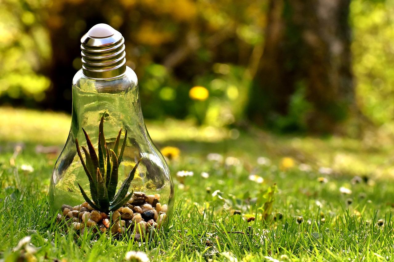 consultoría ambiental, medio ambiente